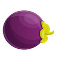 vitamin mangosteen icon cartoon style vector image vector image