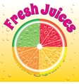Banner for juice grapefruit orange lime lemon