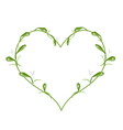 beautiful green mistletoe in a heart shape vector image vector image