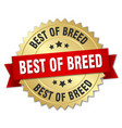 best of breed round isolated gold badge vector image vector image