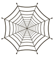 cobweb spiderweb gossamer vector image