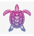 Decorative ethnic turtle with ornamental pattern vector image