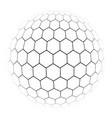 hexagon simple a gray scale vector image vector image