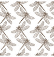 insects that fly and creep monochrome sepia vector image vector image