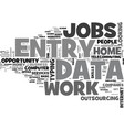 why data entry work from home text word cloud vector image vector image
