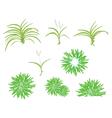 A Isometric Tree Set of Dracaena Plant vector image vector image