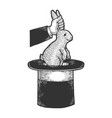 circus illusionist with rabbit sketch vector image vector image