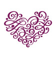 hand drawn heart love valentine flourish separator vector image vector image