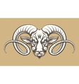Head of A Ram vector image vector image