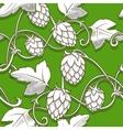 Hops ornament vector image vector image
