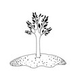 tree in grassland in black dotted silhouette vector image