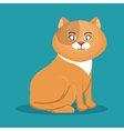 cat cartoon yellow with scarf icon vector image