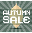 Retro Autumn Sale Title with Leaf on Green vector image