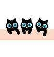 3 black kittens have blue eyes they are playing vector image vector image
