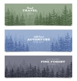 Forest horizon banners Pine trees backgrounds vector image