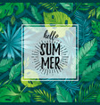 hello summer card poster with text tropic leaf vector image vector image
