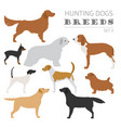hunting dog breeds collection isolated on white vector image vector image