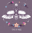 rhinoceros beetle on astrology background