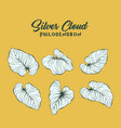 silver cloud palm leaves contour set vector image vector image
