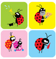 social life beetles vector image vector image