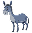 a cute donkey on white background vector image