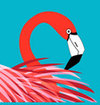 bright portrait a red flamingo vector image