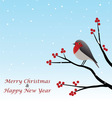 Christmas Greeting With Red Robin On Branch