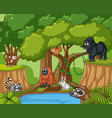 many wild animals in forest vector image