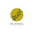 natural olive oil tree olive leaf flower logo vector image