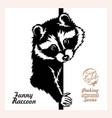 peeking raccoon - funny raccoon out - face vector image vector image