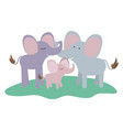 cartoon couple elephants and calf over grass in vector image vector image
