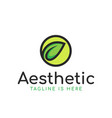 leaf aesthetic logo vector image vector image