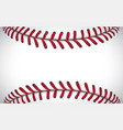 texture of a baseball sport background vector image