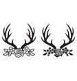 deer horns or antlers with flowers vector image vector image