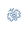 grape line icon concept grape flat symbol vector image vector image