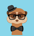 meerkat boy portrait with glasses hat and bow tie vector image