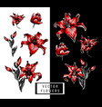 red lilies hand elements vector image vector image