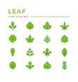 set color line icons leaf vector image