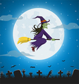 Witch flying on a magic broomstick