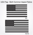 accurate correct black and white usa flags 2 sizes vector image vector image