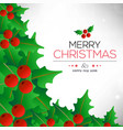 chrismtas card with green leafs frame vector image