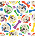 colorful and playful golden retriever vector image vector image