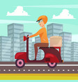 courier delivery orthogonal background poster vector image vector image