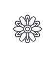 cute aster line icon concept cute aster fl vector image