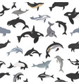 dolphins seamless pattern marine mammals vector image vector image