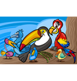 exotic birds group cartoon vector image vector image