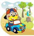 cartoon cute bear driving car vector image vector image