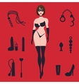 Fetish BDSM sexy woman in lingerie with sex toys vector image