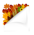 Vintage autumn paper with fall leaves vector image vector image