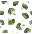 watercolor broccoli pattern vector image